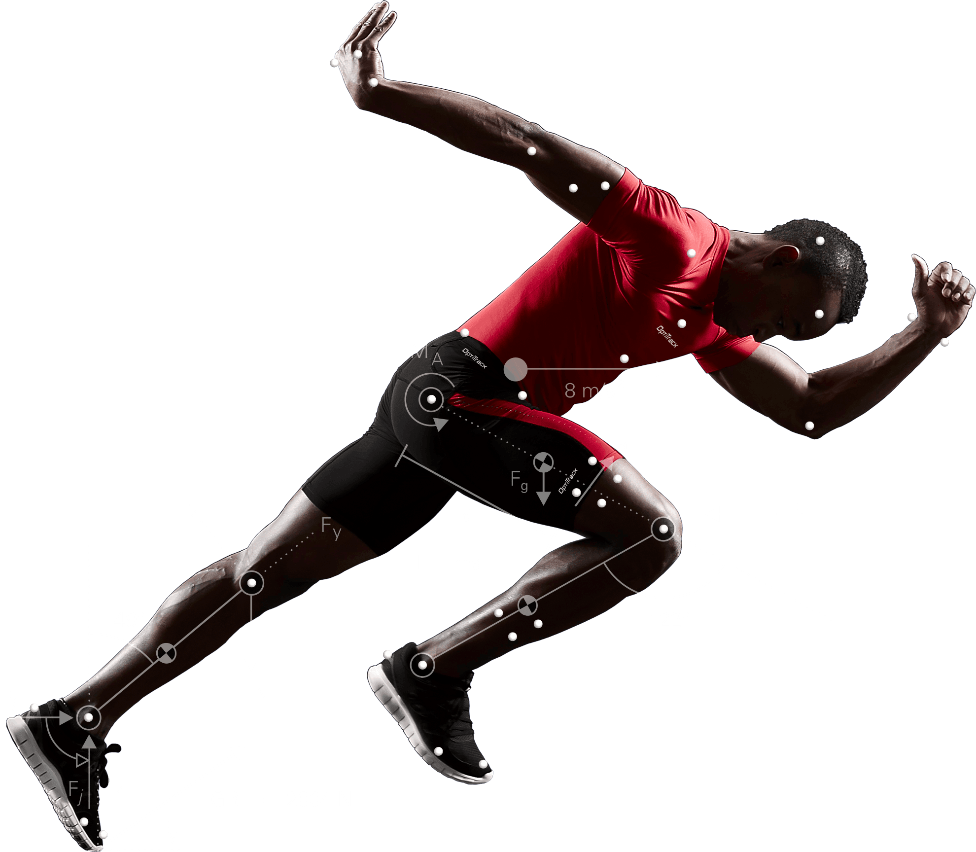Motion Capture for Movement Sciences